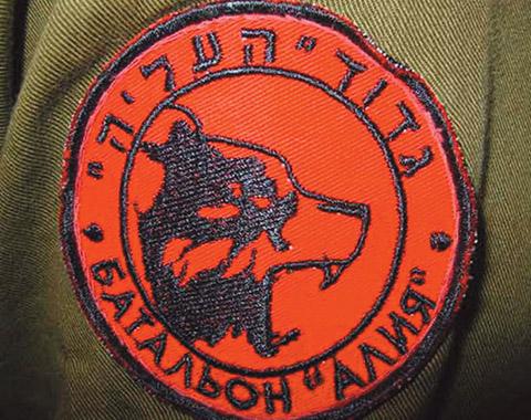 Фейковый характер израильских «диких гусей». Беседу ведет Афанасий Мамедов